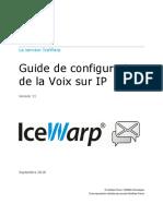 IceWarp - V11 - Guide configuration VoIP