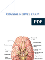 CRANIAL-NERVES-EXAMINATION-COMPLETE.pdf