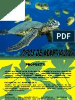 tipos_de_adaptacion