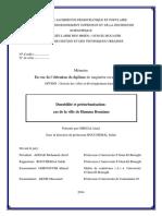 Durabilité et périurbanisation.pdf