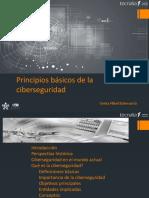 M2.1.1 Principios básicos de la ciberseguridad