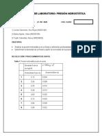 GRUPO 3 VIRTUAL REPORTE PRESION HIDROSTATICA