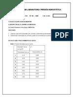 OOO VIRTUAL REPORTE PRESION HIDROSTATICA (1)