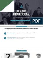 Unicamp-Desenho-Organizacional-pl (1).pdf
