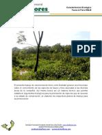 caracterización  ecoEMLB