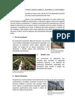 CUMBRE DE LAS NACIONES UNIDAS SOBRE EL DESARROLLO SOSTENIBLE.pdf