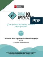 desarrollo-expresion-diversos-lenguajes