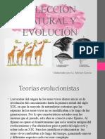 SELECCIÓN NATURAL Y EVOLUCIÓN 8VA.pptx