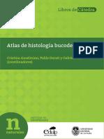 ANSELMINO - 03-07-2020.pdf-PDFA.pdf