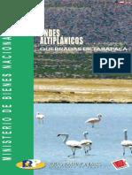 13 QUEBRADAS DE TARAPACA.pdf