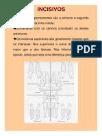UEA_Descrição dos Dentes.pdf