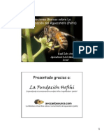 Nociones básicas sobre polinizacion del aguacate