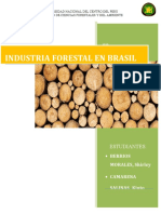 INDUSTRIA FORESTAL EN BRASIL