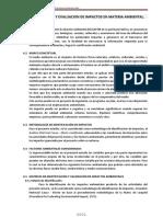 IDENTIFICACION Y EVALUACION DE IMPACTOS EN MATERIA AMBIENTAL.