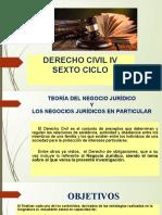 TEORIA DEL NEGOCIO JURIDICO