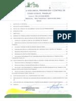 PLAN COVID-19 TRANSPORTES ANEL.pdf