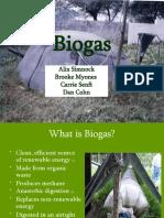 PRLC-Armstrong-biogas-FLHS-spr08ss