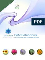 10_archivo-Deficit_atencional