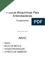 pruebas bioquímicas para enterobacterias