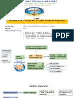 fuentes-del-derecho-internacional (2).pptx
