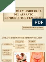 anatoma-y-fisiologa-del-aparato-reproductor-femenino-1193079935919884-5