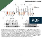 MLL4 Supplemental Figure 136155-JCI-RG-RV-3_sd_424851 (1)