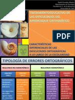 Errores ortograficos_Procesos_Ciclos