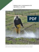 Fertilizantes químicos usos y consecuencias en la agricultura y a la salud.