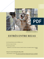 Estres en felinos en cautividad (estrés entre rejas) de lso presos