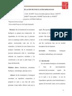 informe bio agricola formulacion inoculantes biologicos