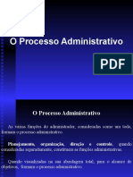 02 - O Processo Administrativo