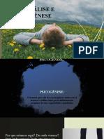 Psicanálise e Psicogênese.pptx