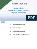 19.05.22 - Aula 06 - Inervação cabeça e pescoço, fossas e trígonos.pdf