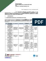 ESTUDIO PREVIO COMOL DEFINITIVO.pdf