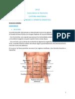 Ficha de cátedra - Cavidad abdominal.pdf