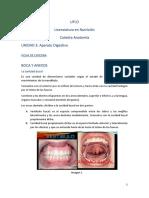 FICHA DE CATEDRA - Boca y anexos Anatomía