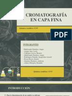 CROMATOGRAFIA DE CAPA FINA (2)