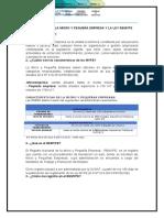 DEFINICIÓN DE LA MICRO Y PEQUEÑA EMPRESA Y LA LEY REMYPE
