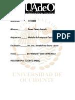 DEFINICION DE PSICOTERAPIA JOAQUN 1720909.pdf
