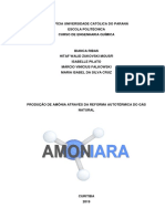 PRODUÇÃO DE AMÔNIA (3)
