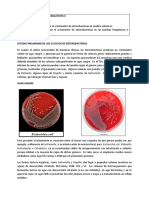PRÁCTICA IX - 2020- I