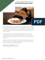 Pastel o torta para perros_ Receta sencilla explicada paso a paso