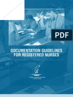 CRNNS Documentation Guidelines 2005