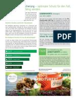 HDI Inserat A4 Arbeitswertsicherung Vorschau.pdf