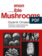 Common Edible Mushrooms