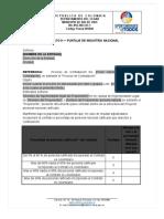 Formato 9 - Puntaje de Industria Nacional - Rio de Oro