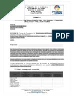 Formato 4 - Capacidad Financiera y Organizacional Extranjeros.docx