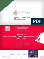 PRACTICA 8_Linfohematopatología_PATOLOGIA ESPECIAL_HIPOLITO.pdf