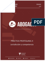 Modulo Nº4  PRACTICA PROFESIONAL II
