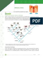 evolucion y teoria 9.docx